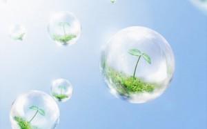 мыльный пузырь с ростком